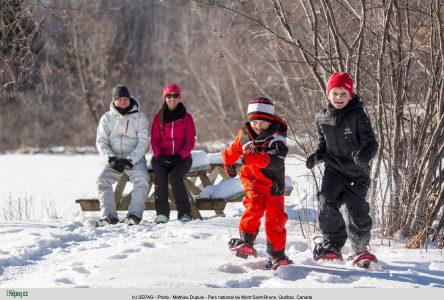 Des idées pour jouer dehors en famille dans la région