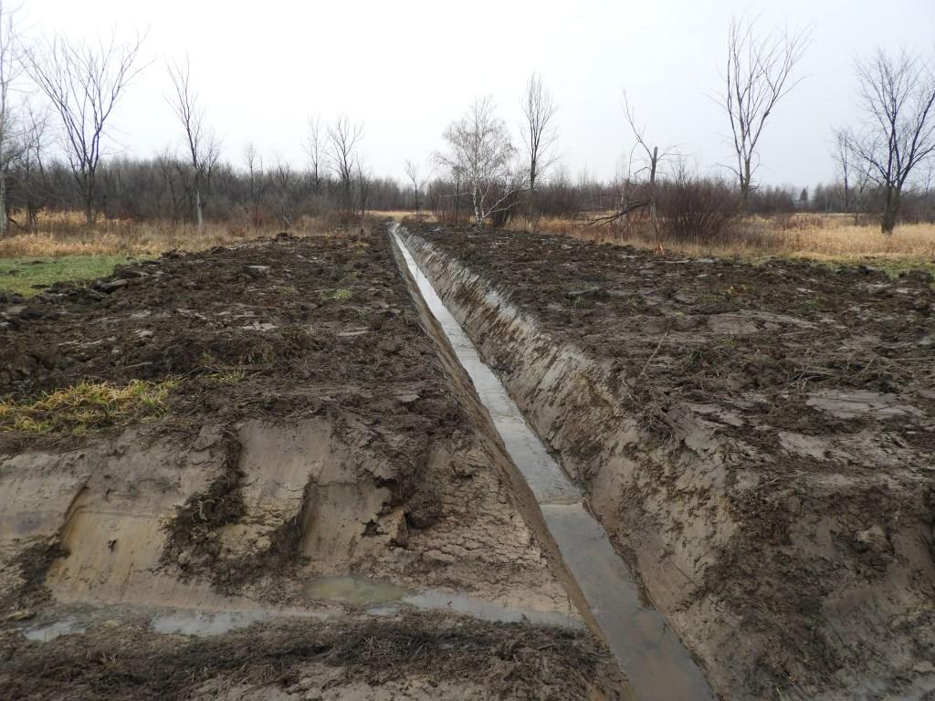 Drainage de champs boueux ou destruction de milieux humides