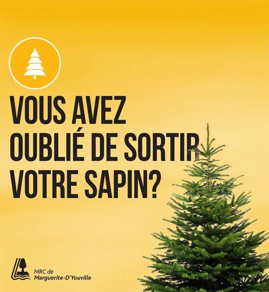 Il est possible porter votre sapin dans le point de dépôt de votre municipalité jusqu'au 29 janvier.