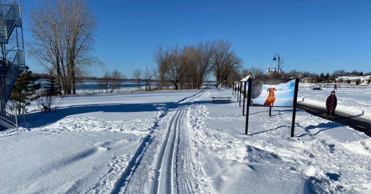 Un nouveau sentier de ski de fond au parc de la Commune à Varennes