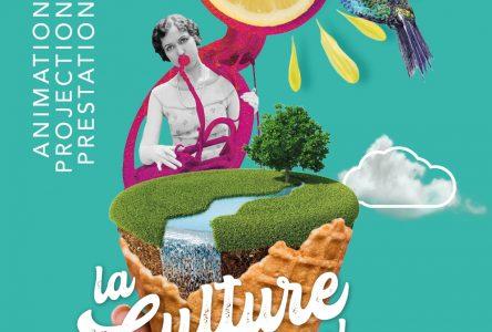 Culture à ciel ouvert : une programmation estivale à découvrir