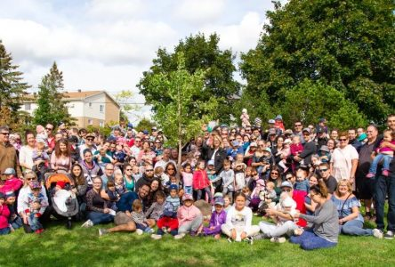 Grandir avec mon arbre : les enfants nés ou adoptés en 2019 et en  2020 se rassembleront pour inaugurer leur arbre