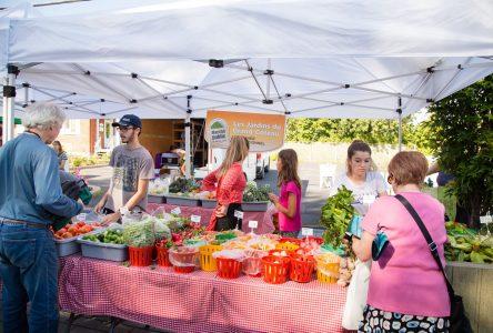 Le retour à Sainte-Julie d'un petit marché en bien bonne santé