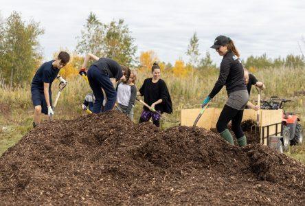 Pas moins de 5 000 arbres ont été plantés sur l'île Sainte-Thérèse à Varennes