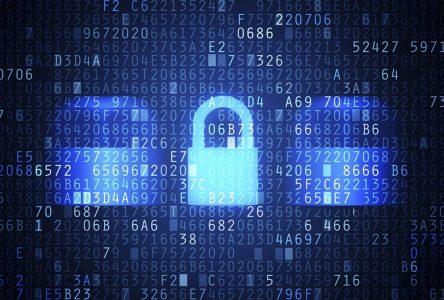 Le Cégep Édouard-Montpetit accueille les meilleurs cégépiens en cybersécurité
