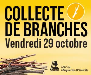 Collect de branches